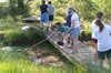 Pond_cleanup_42107_010